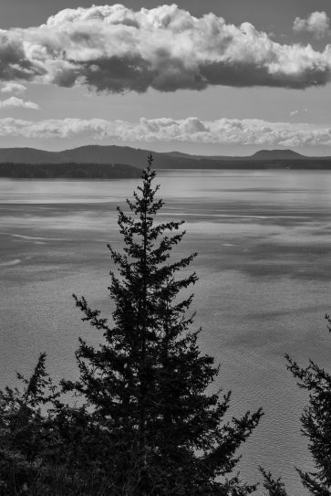 puget sound from the chuckanuts