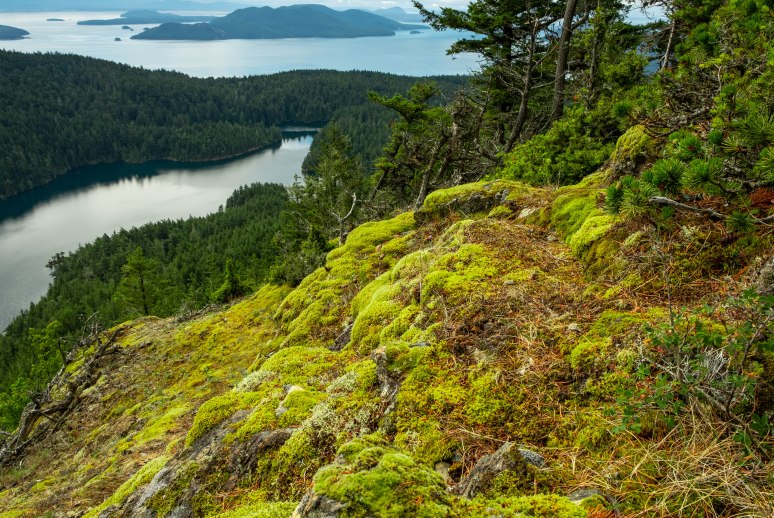 July 2018 - Mount Constitution 476-4