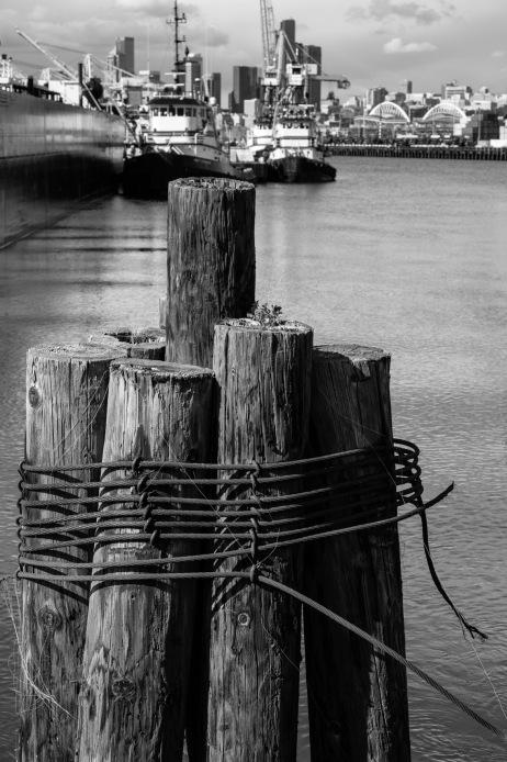 May 2020 - Harbor Island 078