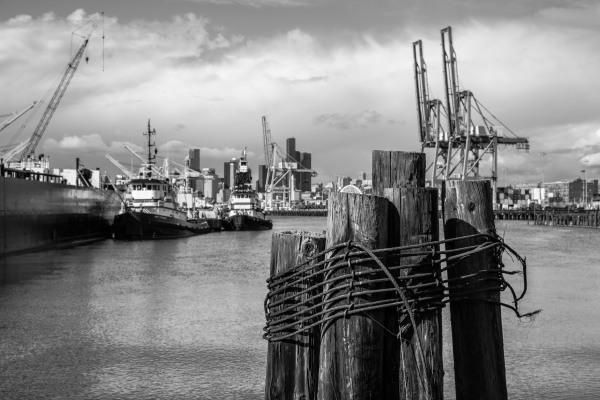 May 2020 - Harbor Island 069-2